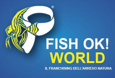 acquari-pesci-tropicali-arredo-interni-esterni-pfish-ok-world-palermo_10ccb1b6e58600151b689c382fcd8a36