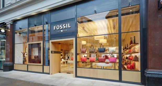 fossil2-620x330